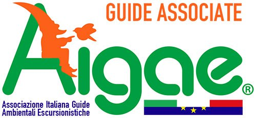AIGAE_LOGO_GUIDE_ASSOCIATE_500px