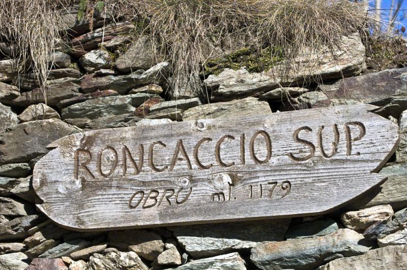 roncaccio_2