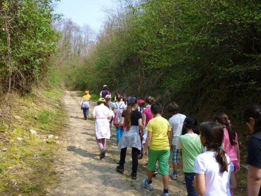 baadc180eb Trekking per famiglie Piemonte, Lombardia, vicino Milano Novara Varese  Biella