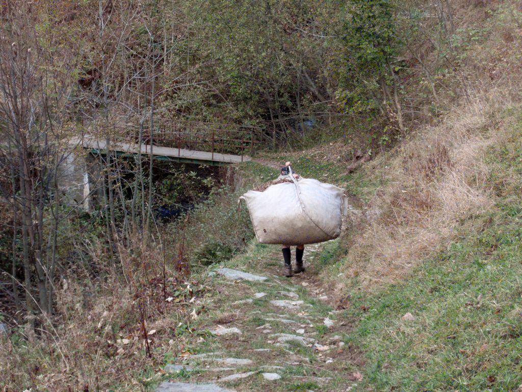trasporto fieno Rimella