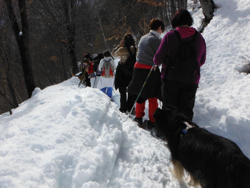 sentiero inverno